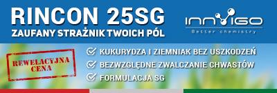herbicyd rincon 25 sg na chwasty w kukurydzy, zwalczanie chwastów