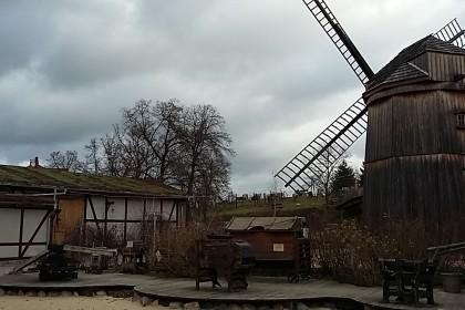 INNVIGO w Olandii wiatrak