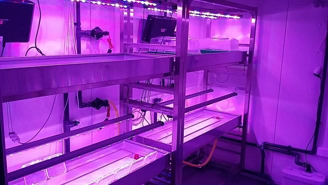 laboratorium w centrum uprawy