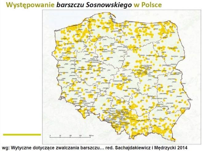 występowanie barszczu sosnowskiego mapa polski