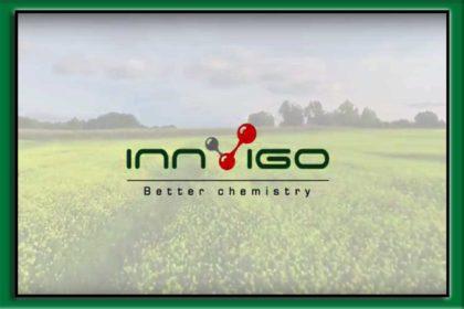 zwalczanie szkodników w uprawach pszenicy ozimej i rzepaku