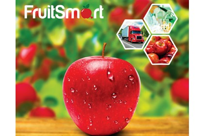 regulator wzrostu fruitsmart