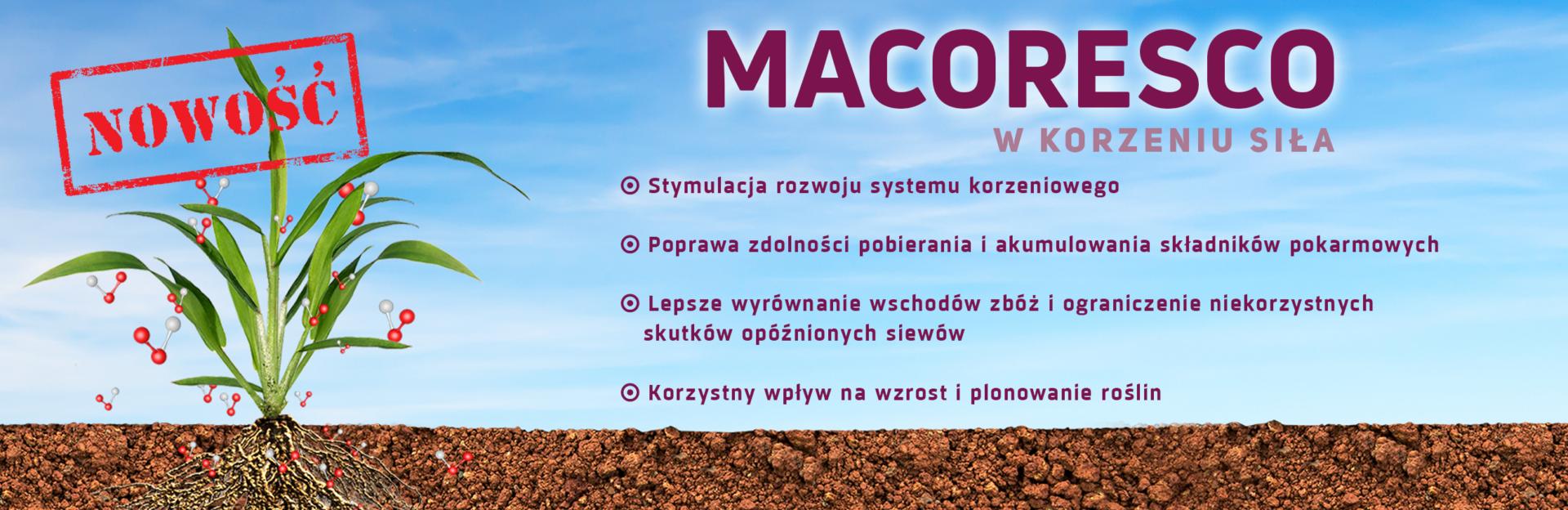 maco_baner_big3_ok