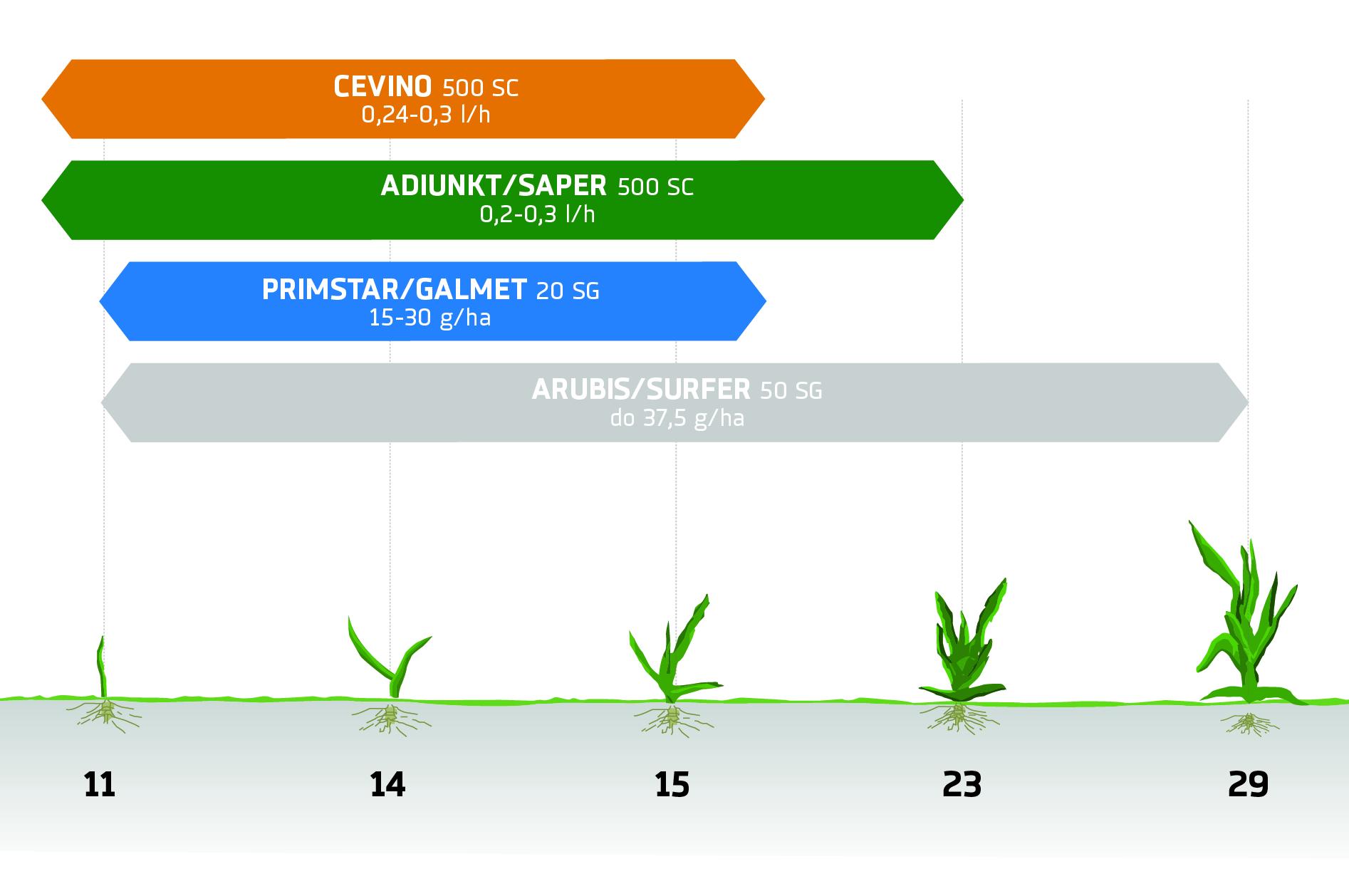 Jesienne zabiegi herbicydowe - zboża ozime. Ochrona herbicydowa INNVIGO.