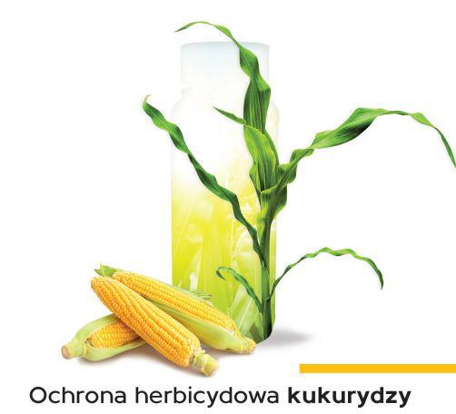 Izoksaflutol herbicyd metodus 650 wg