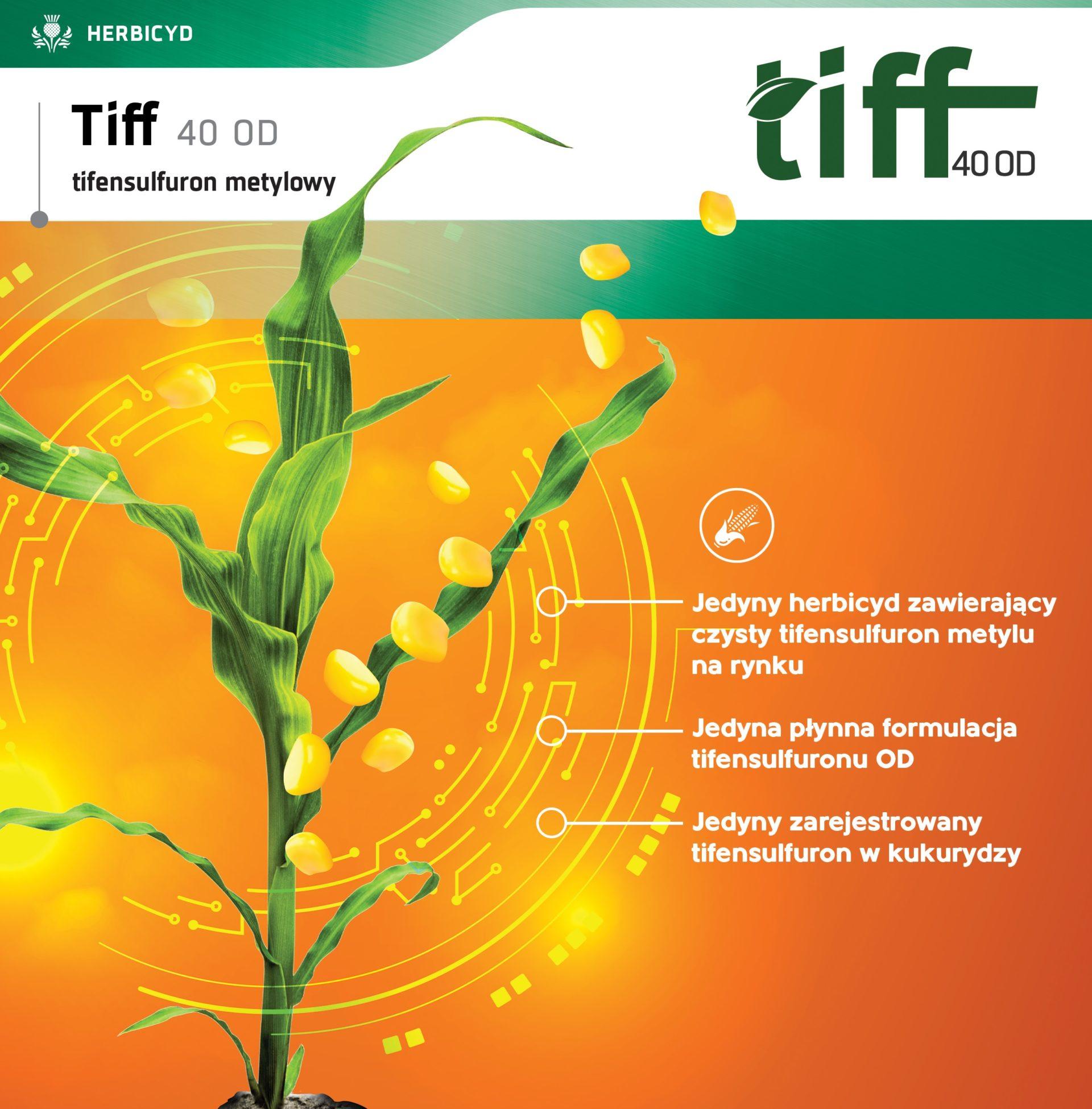 Hebicyd Tiff - zwalczanie chwastów w kukurydzy