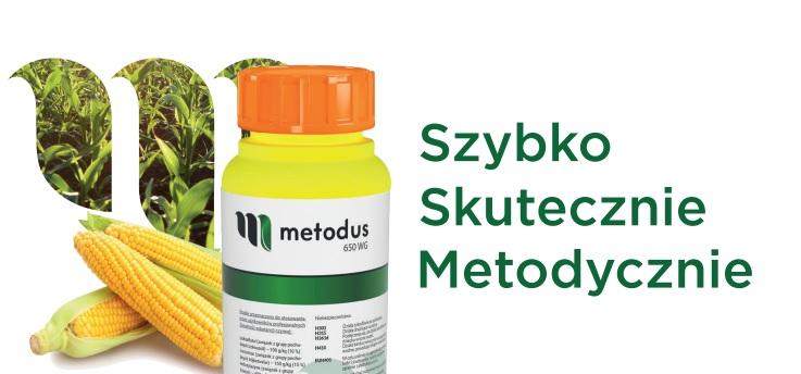 Terbutylazyna herbicyd Metodus 650 WG