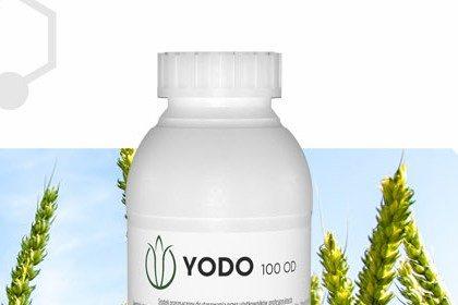 Yodo - zwalczanie chwastów w zbożach